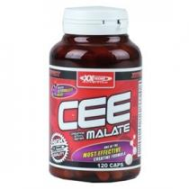 XXtreme Nutrition Creatine Ethyl Ester Malate 120 tbl.