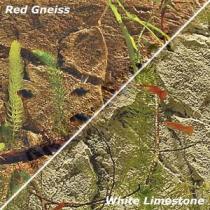 BackToNature SLIM RED Gneiss 50D