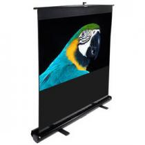 Elite Screens ezCinema F135NWV