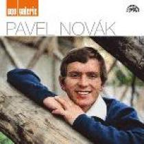 Pavel Novák: Pop galerie