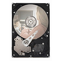 SEAGATE Pipeline 500GB SATA/300 5900 8MB