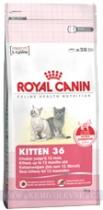 Royal Canin Cat Kitten 36 2 kg