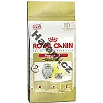 Royal Canin Cat Persian 10kg