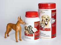 Orling Gelacan Plus Darling 500g