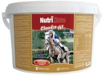 Biofaktory Nutri Horse Chondro pro koně tbl 3kg