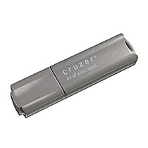SANDISK Cruzer Professional 2GB