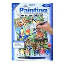 OEM Malování podle čísel - Džungle