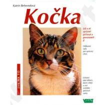 Kočka-Jak na to