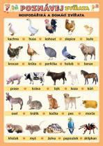 Poznávej zvířata - Hospodářská a domácí zvířata - Petr Kupka