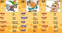 Chytré karty - Angličtina kniha plná slovíček