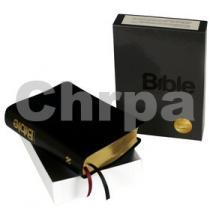 Bible (kůže)