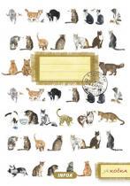 Infoa Notýsek - Já kočka