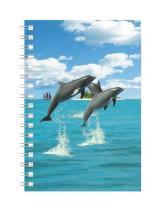 Abc Develop Deníček - Úžaska - Delfíni