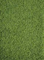 Breno Prim - 140 x 200 cm, Zelená