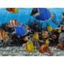 Gelios Software 3D Fish School Screensaver
