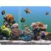Prolific Publishing Marine Aquarium 2.6