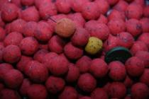 LK Baits Mini boilie Wild Strawberry 12mm 500g