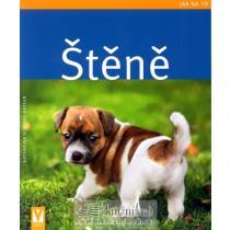 Štěně - Jak na to