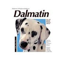 Dalmatin jak na to