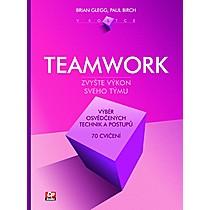 Teamwork v kostce