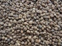 Petr Klais Tygří ořechy standard 1kg