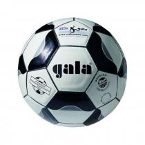 GALA BN 5022 S Nohejbalový míč