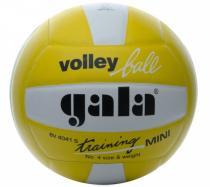 Gala BV 4041 S