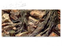 Aqua Excellent Pozadí Root 100 x 50 cm
