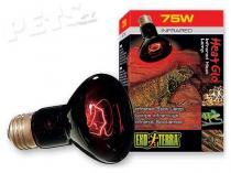 Hagen EXO TERRA Infrared Basking Spot 75W