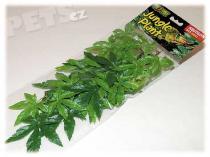 Hagen Rostlina EXO TERRA Abuliton malá 40 cm