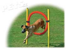 Dog Fantasy Set proskakovací Agility
