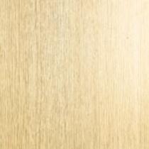OTTOPAN Plastový obkladový panel vnitřní dub bílý