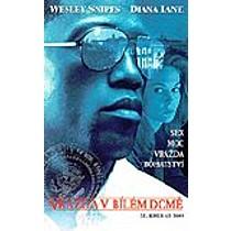 Vražda v Bílém domě DVD (Murder At 1600)