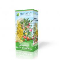 Megafyt Pharma směs ledviny s brusinkou 20x1,5g