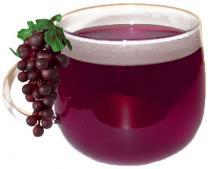 CATUS Hot Drink Svařené víno 1 ks