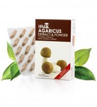 Hawlik Vitalpilze Agaricus extrakt + prášek 60 kapslí