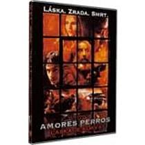 Amores Perros: Láska je kurva (FilmX) DVD (Amores Perros)