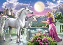 CASTORLAND 120 dílků - Princezna a jednorožci
