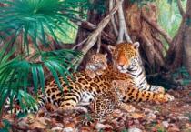 CASTORLAND 3000 dílků - Jaguáři v džungli