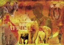 RAVENSBURGER 1000 dílků - Dojmy z Afriky
