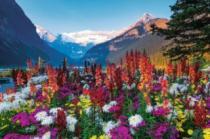 RAVENSBURGER 3000 dílků - M. Wheatley: Rozkvetlé hory