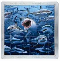PIATNIK 3D magnetické 64 dílků - Žraloci