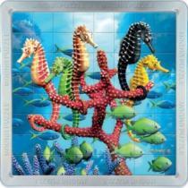 PIATNIK 3D magnetické 64 dílků - Mořští koníci
