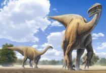 CASTORLAND 120 dílků - Plateosaurus Desierto
