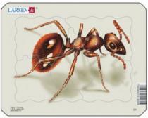 LARSEN 5 dílků - Mravenec