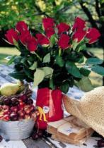 DINO Aktiv 500 XXL dílků - Kytice růží