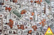 PIATNIK 1000 dílků - Peníze