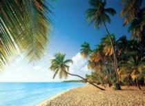 CLEMENTONI - Tropická pláž 1000 dílků