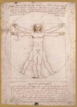 EDITIONS RICORDI 1000 dílků - Vitruvianský muž - proporce lidské postavy