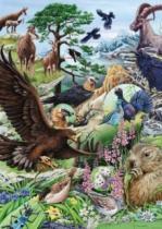 HEYE 1000 dílků - Flóra & Fauna: Vysoké hory